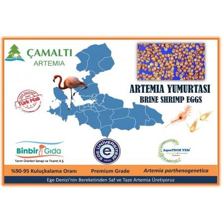 Artemia Yumurtası %100 Yerli 50 Gr