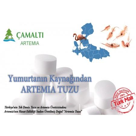 Artemia Tuzu