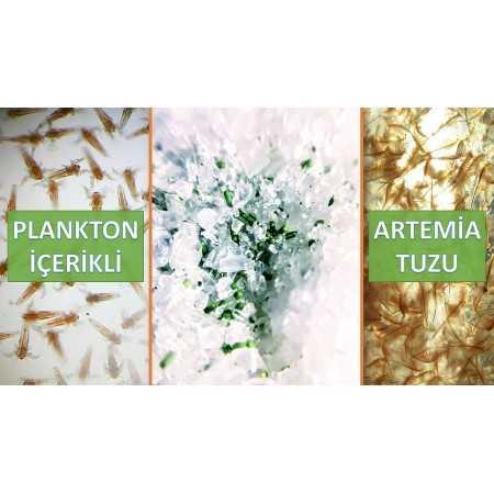Planktonlu Artemia Tuzu